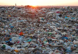 poligon Noviy Svet Eco dump