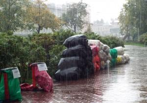 Сдача мусора на переработку в санкт петербурге