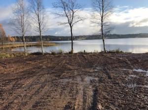 Застройщик ООО «Сити 78» вырубил растительность вплоть до уреза воды, застелил береговую полосу геотекстилем и засыпал песком.