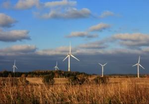 wind power renewable