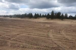 Кузоменьские пески, Терский берег, Мурманская область.