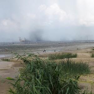 Фото 5. Угольная пыль, поднимающаяся над портом
