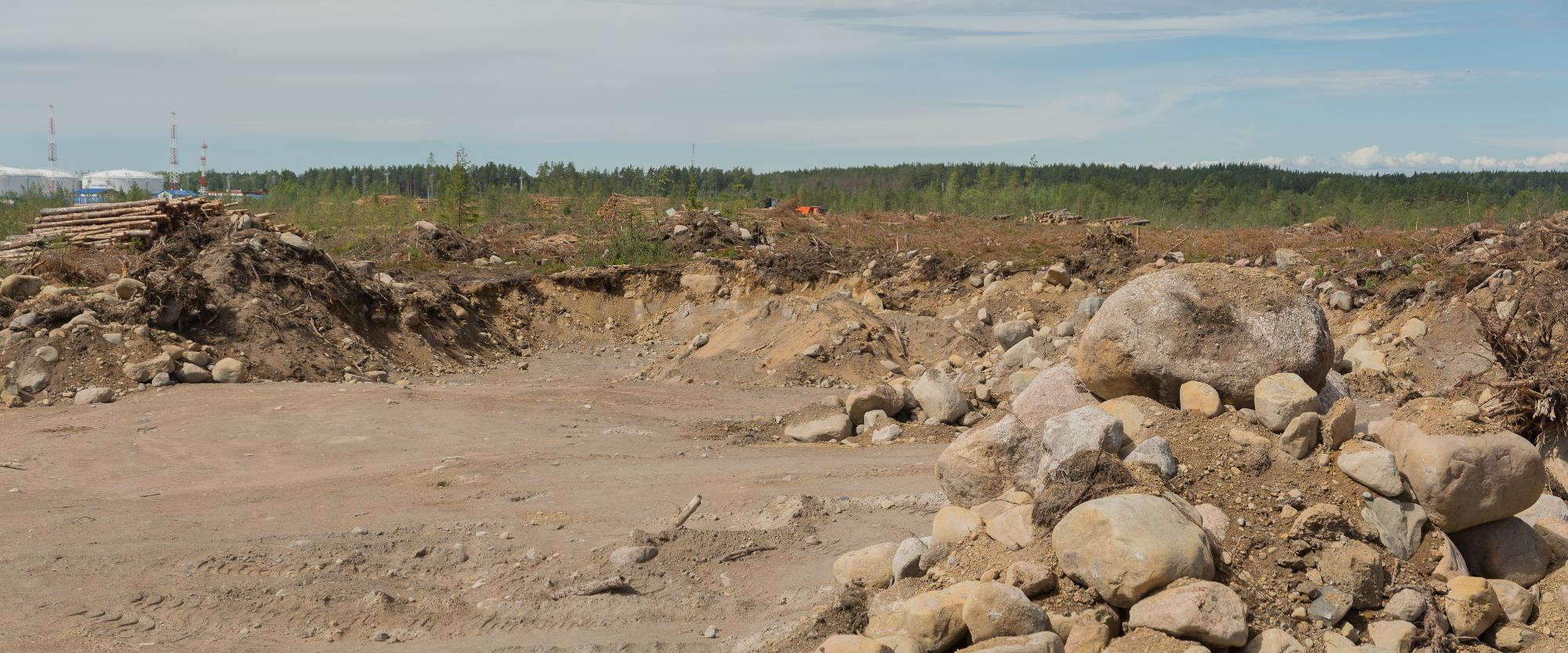 1 Вырубка в Балтийском (2)