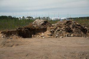 Рядом с вырубкой под будущий хаб базируются склады соседнего нефтяного порта