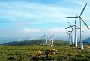 landscape-nature-sky-field- wind power renewable energy horses