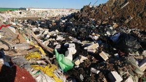 Koltushi waste